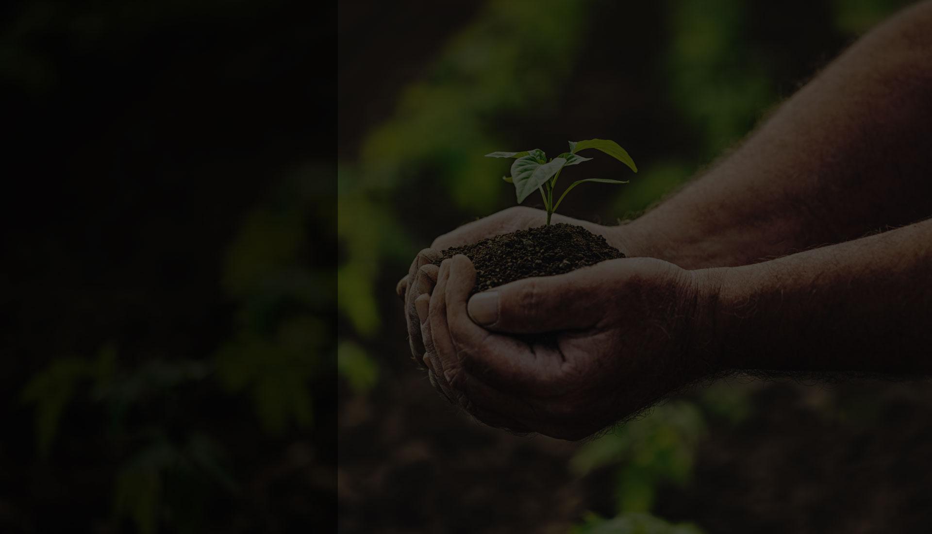 L'agro-écologie